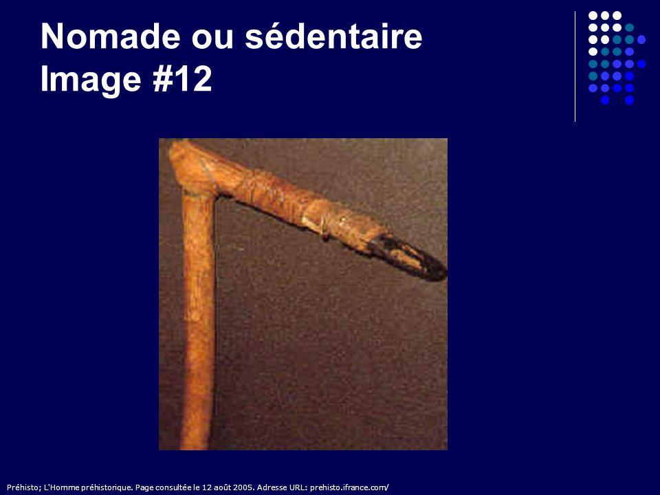 Nomade ou sédentaire Image #12 Préhisto; L'Homme préhistorique. Page consultée le 12 août 2005. Adresse URL: prehisto.ifrance.com/