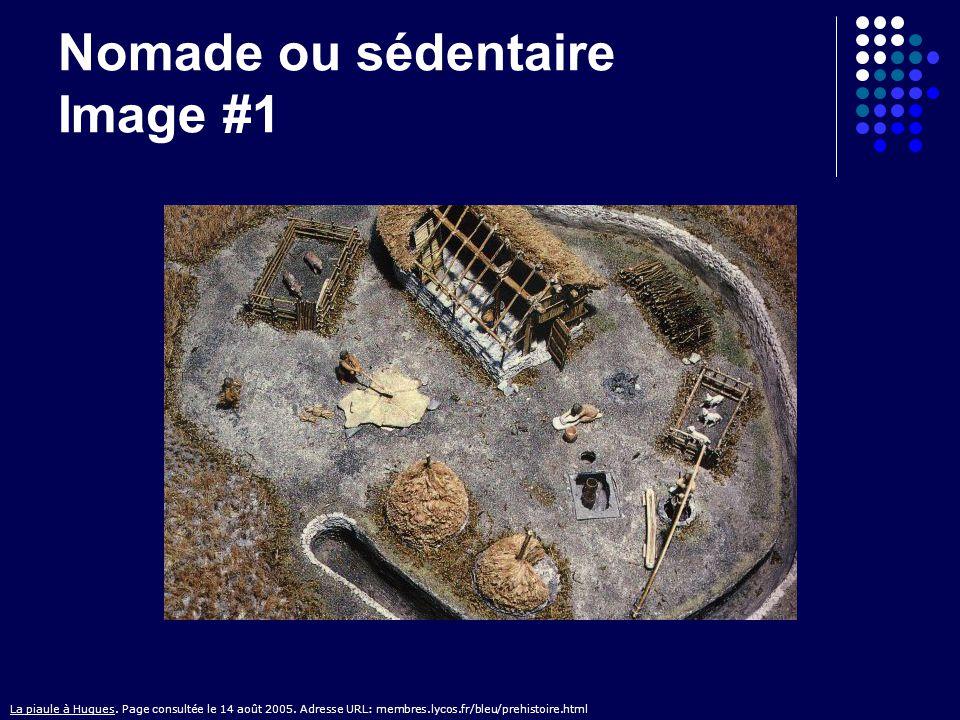 Nomade ou sédentaire Image #1 La piaule à Hugues. Page consultée le 14 août 2005. Adresse URL: membres.lycos.fr/bleu/prehistoire.html