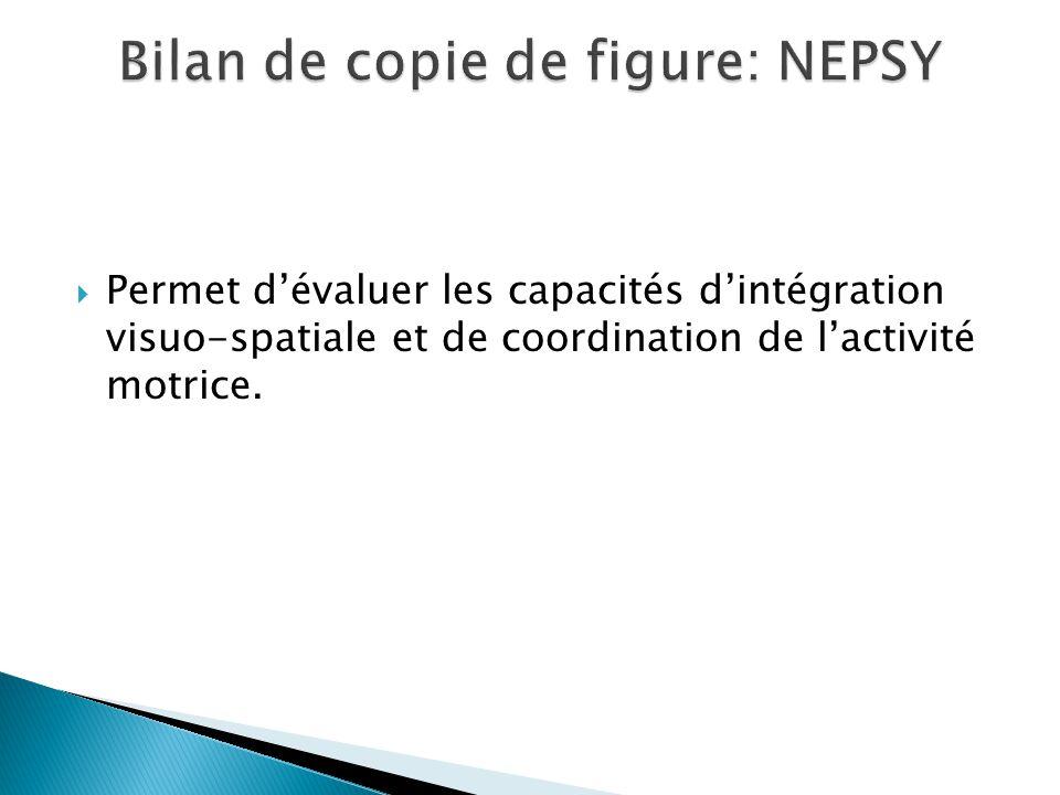  Permet d'évaluer les capacités d'intégration visuo-spatiale et de coordination de l'activité motrice.