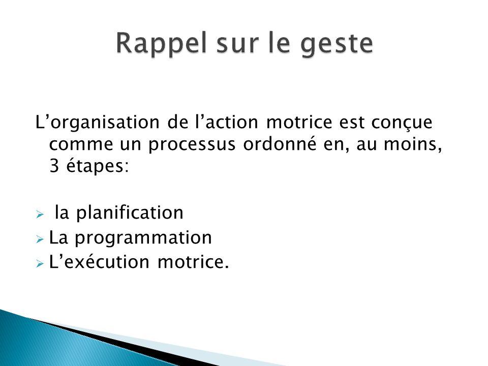 L'organisation de l'action motrice est conçue comme un processus ordonné en, au moins, 3 étapes:  la planification  La programmation  L'exécution m