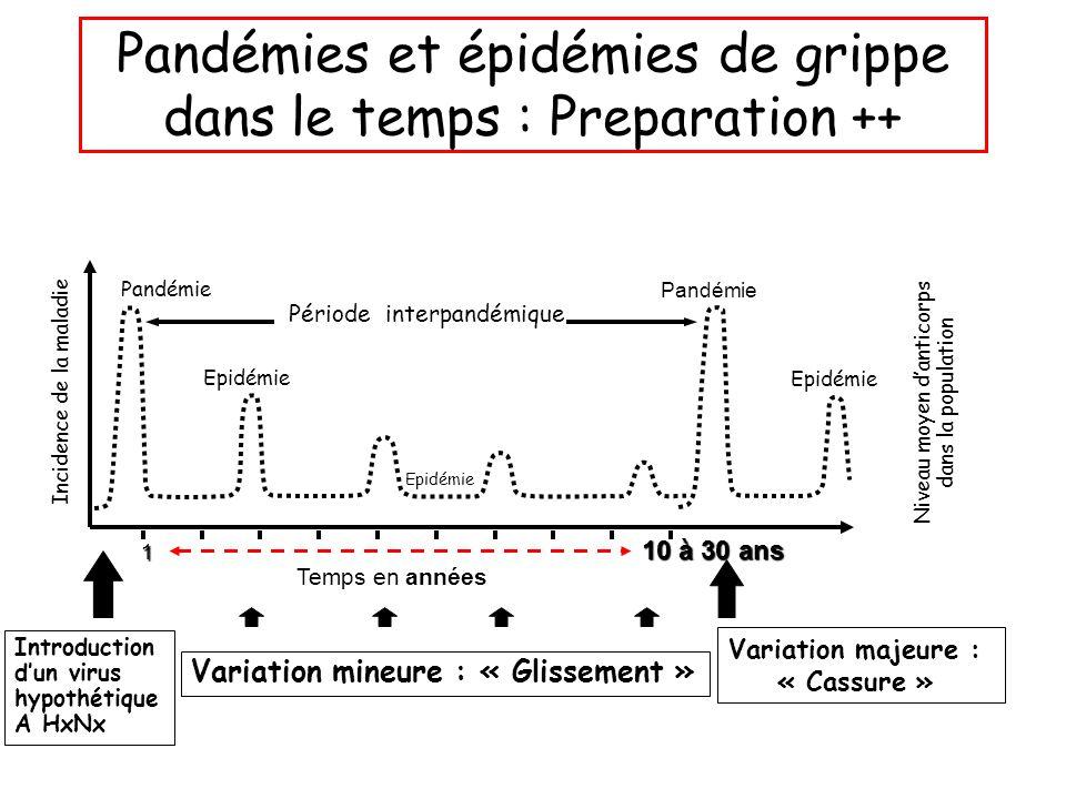 Pandémies et épidémies de grippe dans le temps : Preparation ++ Incidence de la maladie Niveau moyen d'anticorps dans la population Pandémie Epidémie