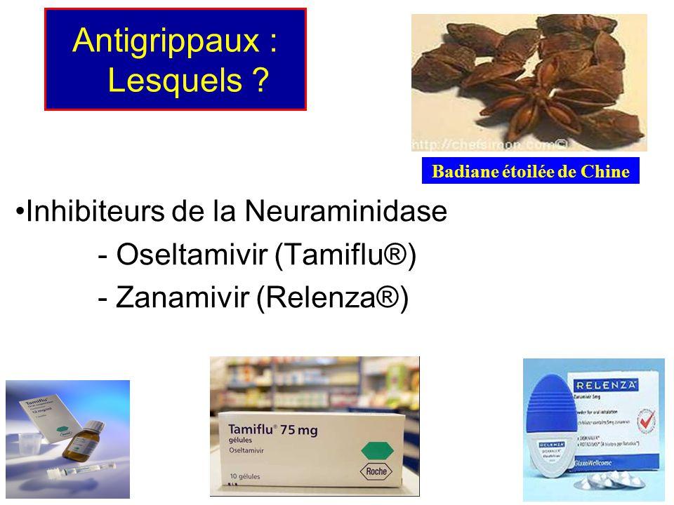 Antigrippaux : Lesquels ? Inhibiteurs de la Neuraminidase - Oseltamivir (Tamiflu®) - Zanamivir (Relenza®) Badiane étoilée de Chine