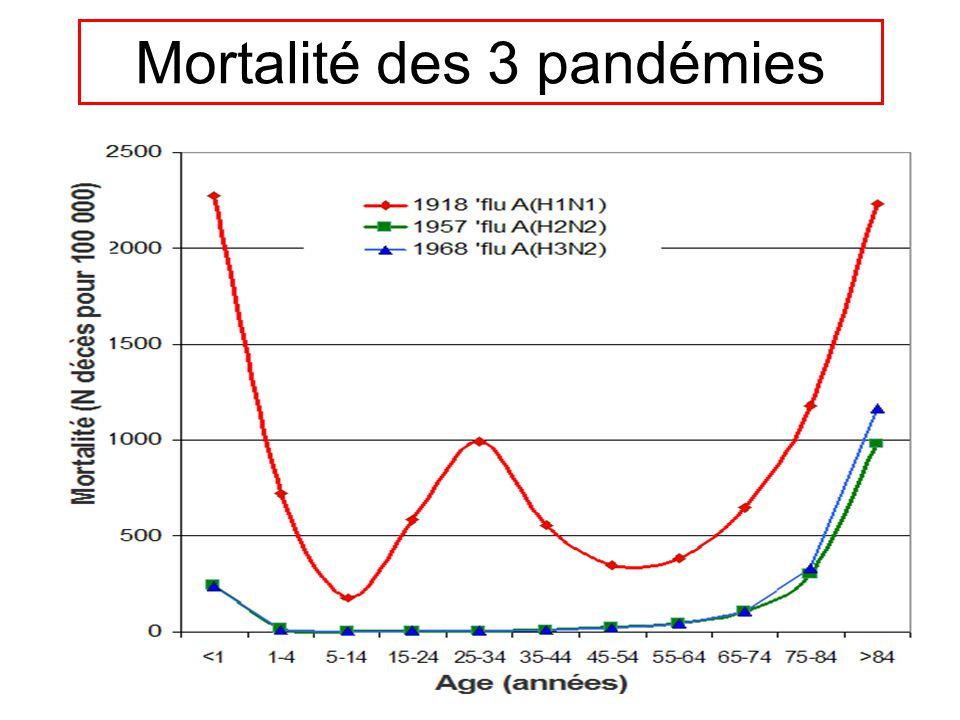 Mortalité des 3 pandémies