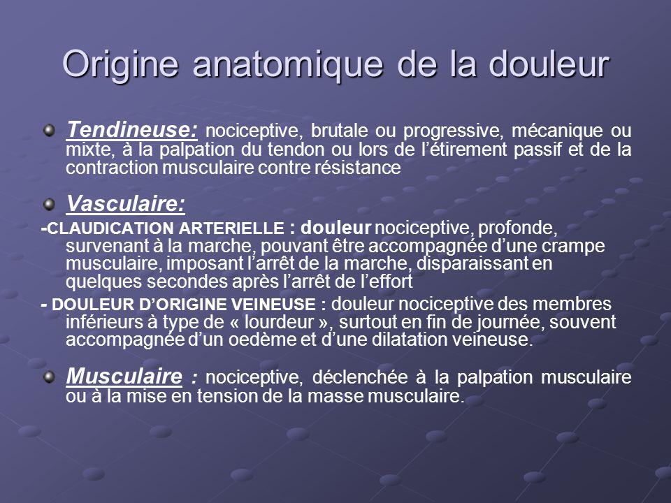 Origine anatomique de la douleur Tendineuse: nociceptive, brutale ou progressive, mécanique ou mixte, à la palpation du tendon ou lors de l'étirement