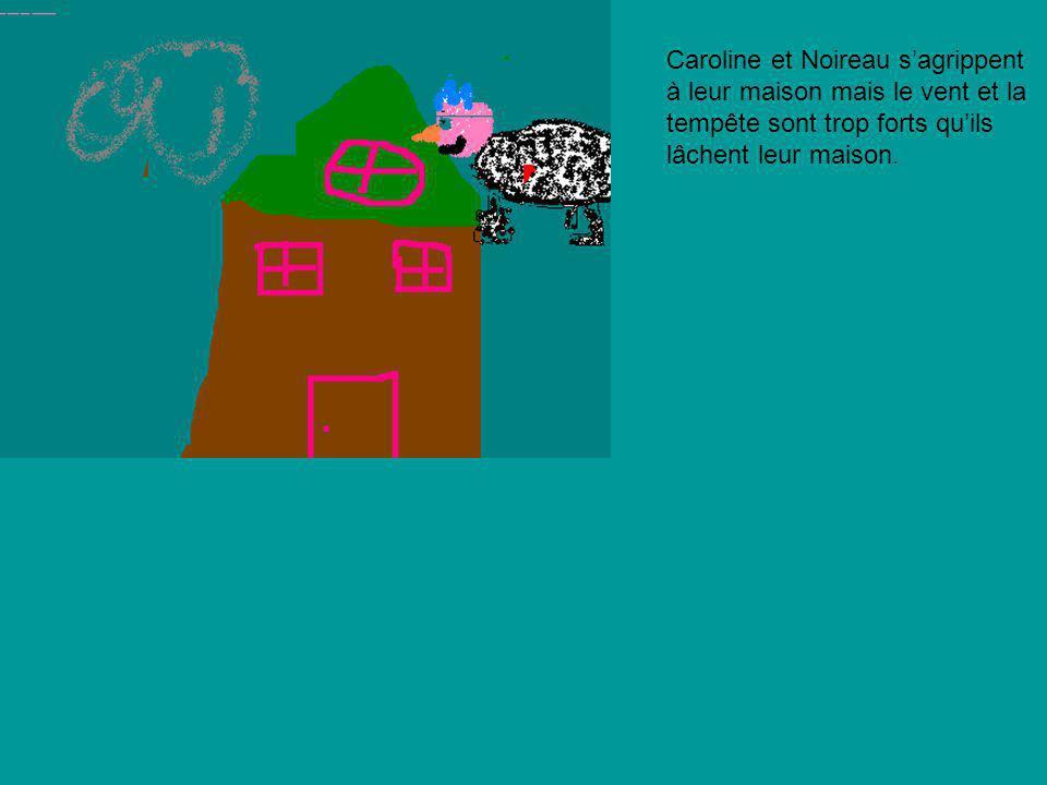 Caroline et Noireau s'agrippent à leur maison mais le vent et la tempête sont trop forts qu'ils lâchent leur maison.