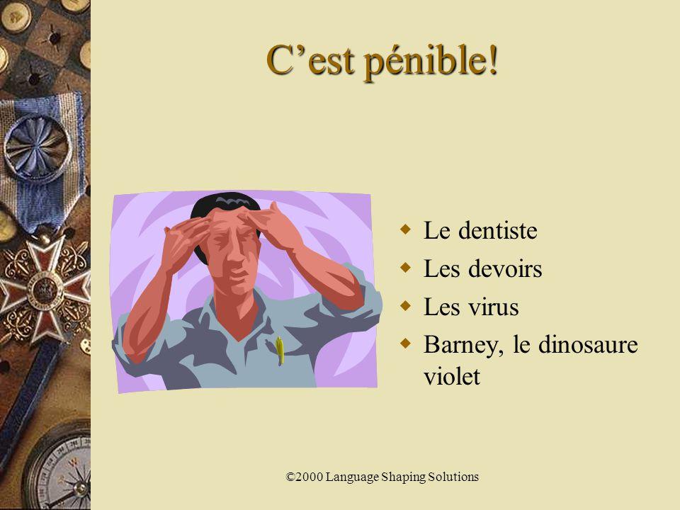 ©2000 Language Shaping Solutions C'est chouette.C'est super.