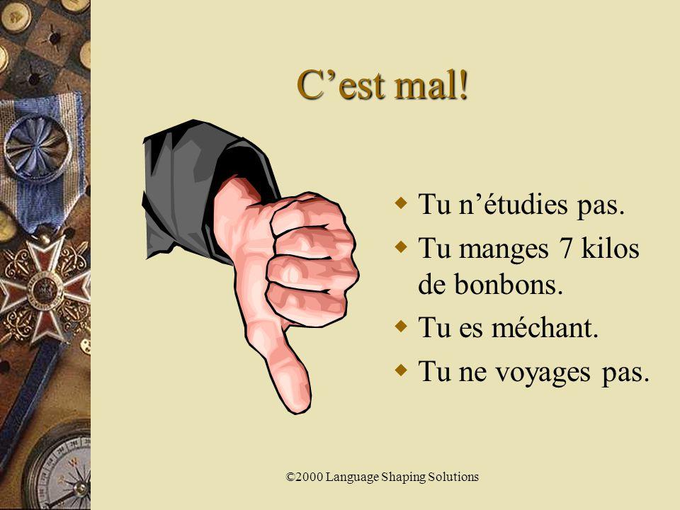 ©2000 Language Shaping Solutions C'est bien.  Tu étudies.