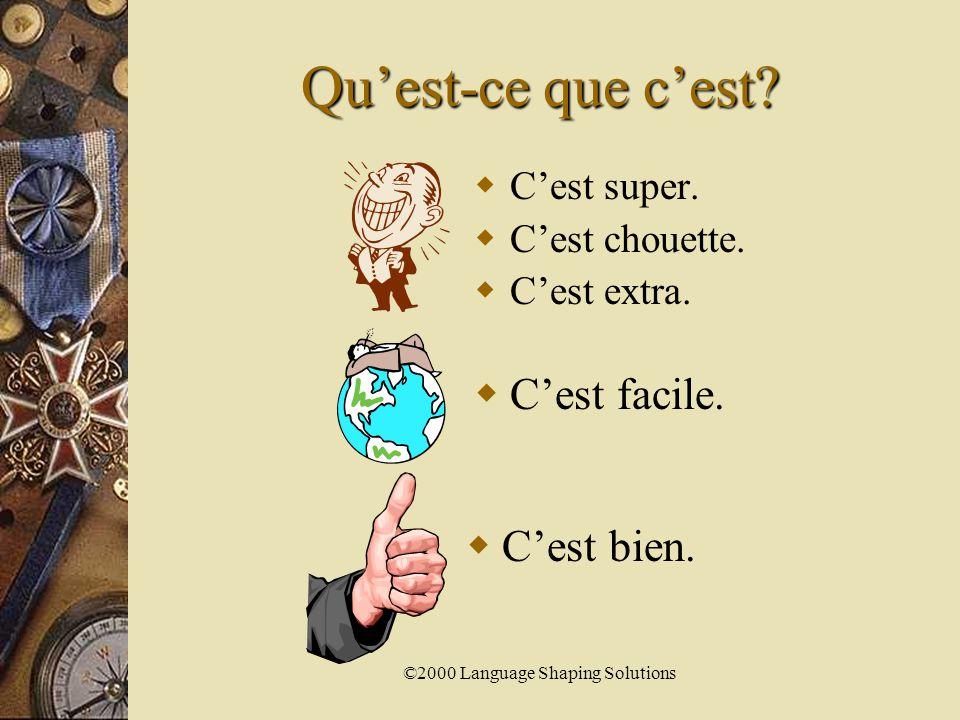 ©2000 Language Shaping Solutions C'est mal.  Tu n'étudies pas.