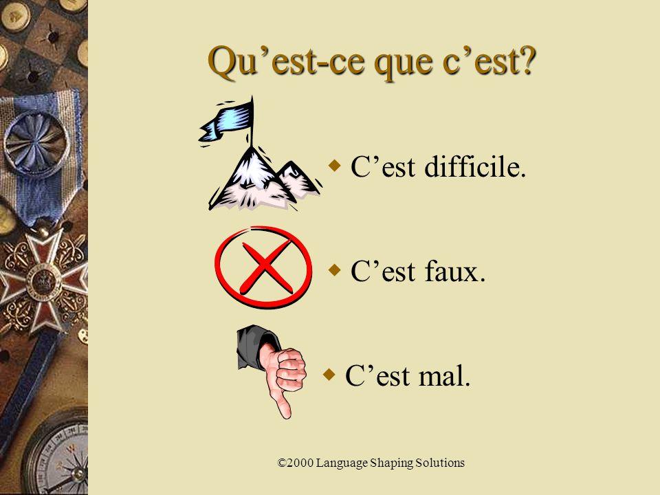 ©2000 Language Shaping Solutions Qu'est-ce que c'est  C'est drôle.  C'est vrai.  C'est pénible.