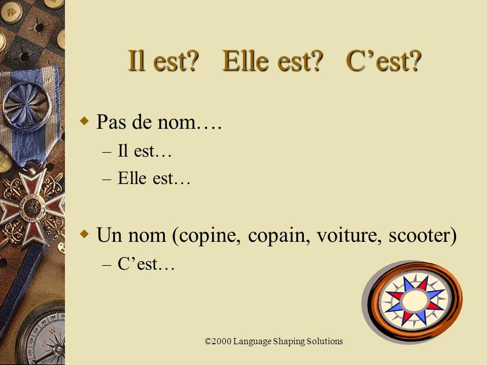 ©2000 Language Shaping Solutions La différence  Elle est intelligente.