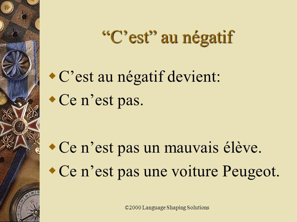 ©2000 Language Shaping Solutions Le pluriel – amusants  Ils sont amusants.