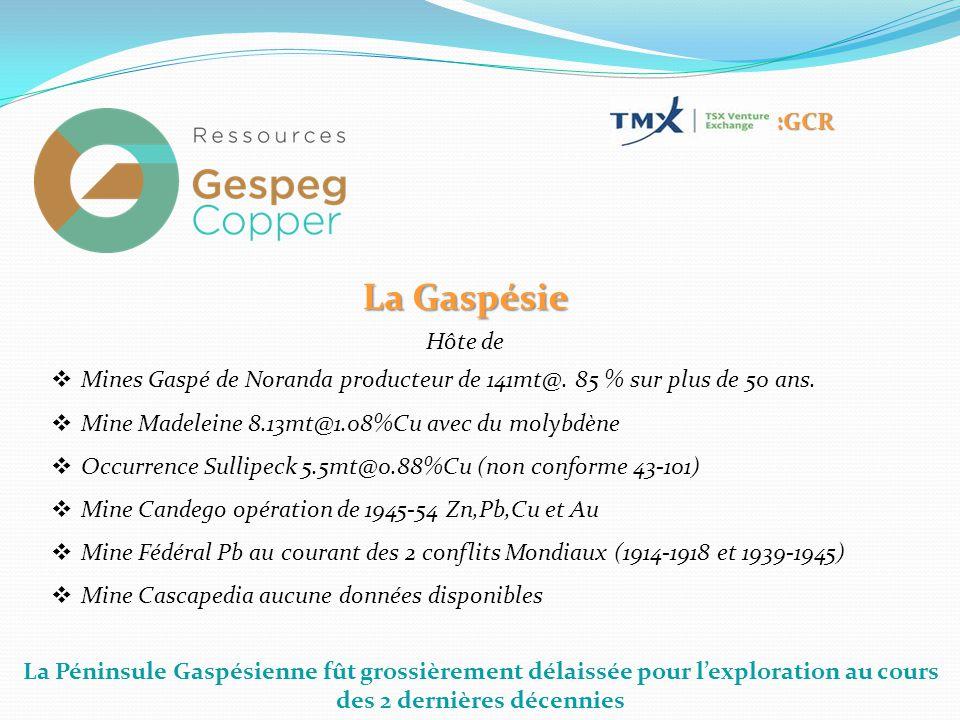 La Péninsule Gaspésienne fût grossièrement délaissée pour l'exploration au cours des 2 dernières décennies :GCR La Gaspésie Hôte de  Mines Gaspé de Noranda producteur de 141mt@.