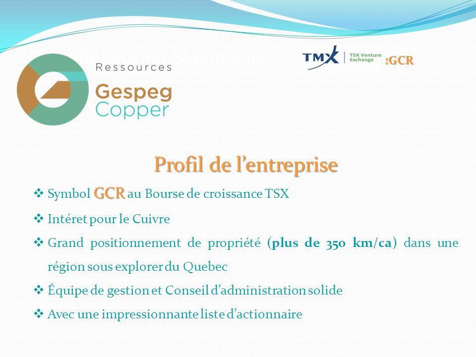 Profil de l'entreprise GCR  Symbol GCR au Bourse de croissance TSX  Intéret pour le Cuivre  Grand positionnement de propriété (plus de 350 km/ca) dans une région sous explorer du Quebec  Équipe de gestion et Conseil d'administration solide  Avec une impressionnante liste d'actionnaire :GCR