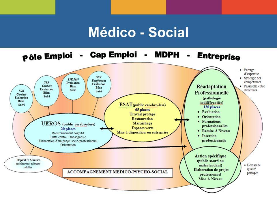 Médico - Social