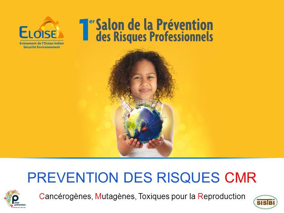 SOMMAIRE PREVENTION DES RISQUES CMR – NOVEMBRE 2013 2 IMPORTANCE DU PROBLEME DEFINITIONS EXPOSITION REPERAGE PREVENTION SURVEILLANCE MEDICALE CONCLUSION