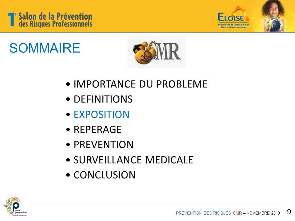 REPERAGE PREVENTION DES RISQUES CMR – NOVEMBRE 2013 20
