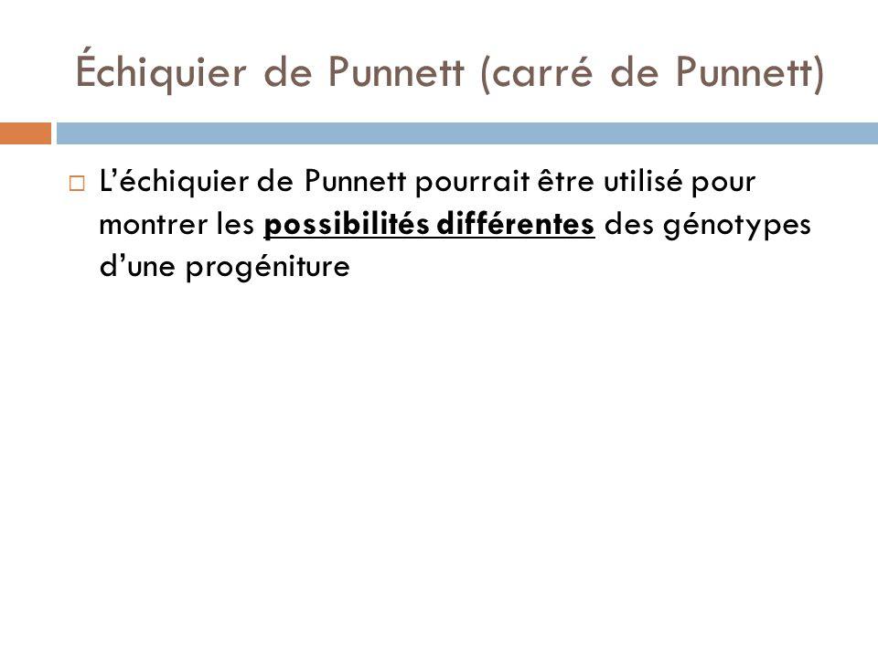 Échiquier de Punnett (carré de Punnett)  L'échiquier de Punnett pourrait être utilisé pour montrer les possibilités différentes des génotypes d'une progéniture