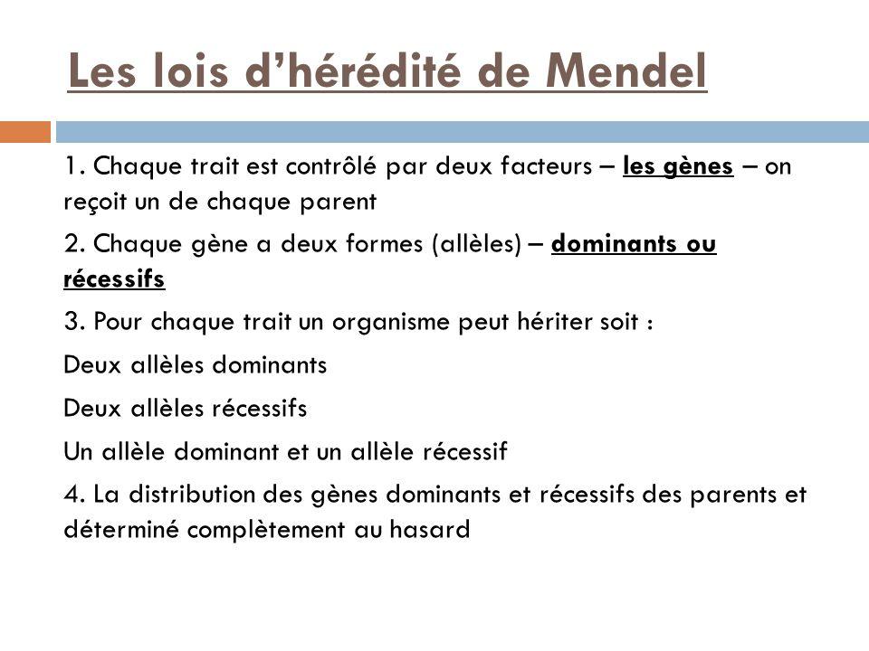 Les lois d'hérédité de Mendel 1.