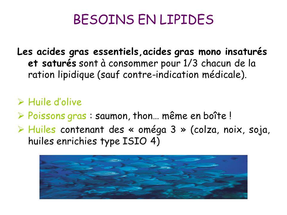 BESOINS EN LIPIDES Les acides gras essentiels,acides gras mono insaturés et saturés sont à consommer pour 1/3 chacun de la ration lipidique (sauf cont