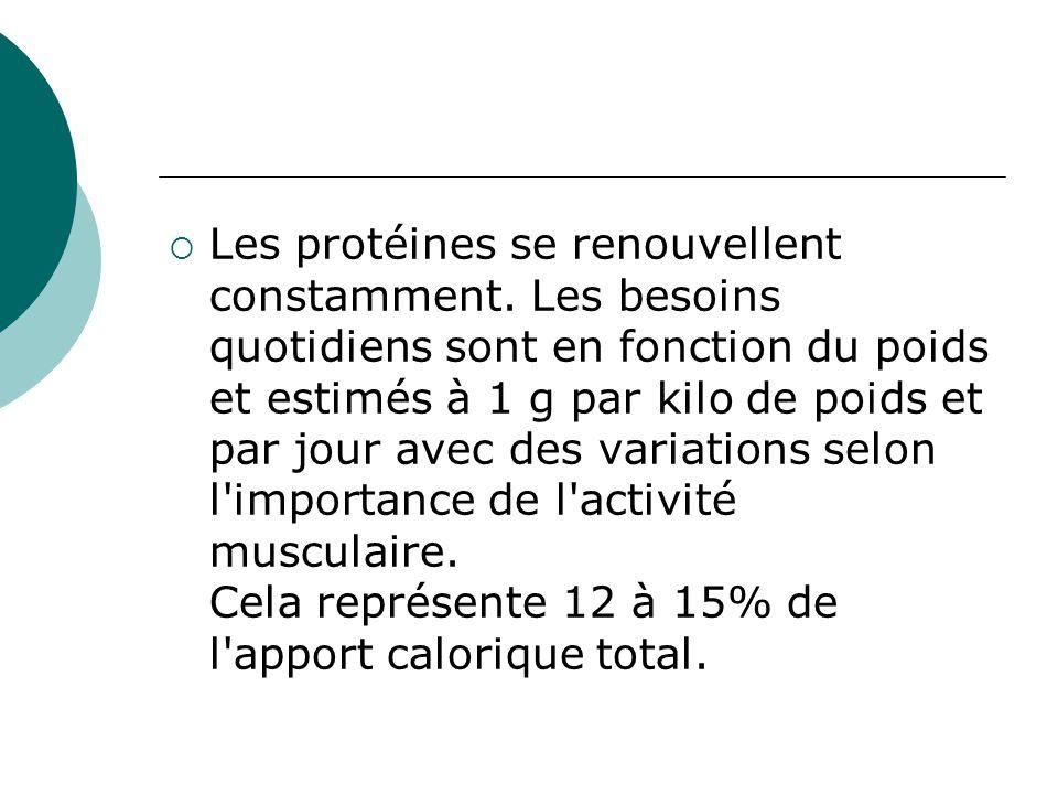  Les protéines se renouvellent constamment. Les besoins quotidiens sont en fonction du poids et estimés à 1 g par kilo de poids et par jour avec des