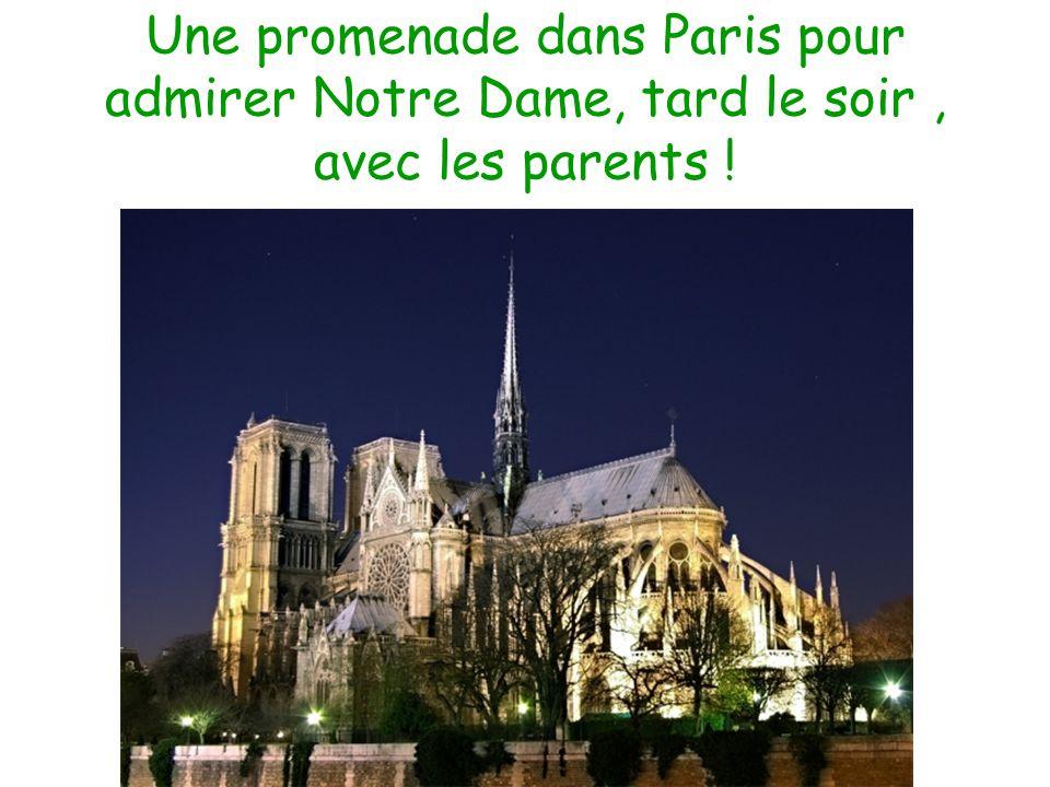 Une promenade dans Paris pour admirer Notre Dame, tard le soir, avec les parents !