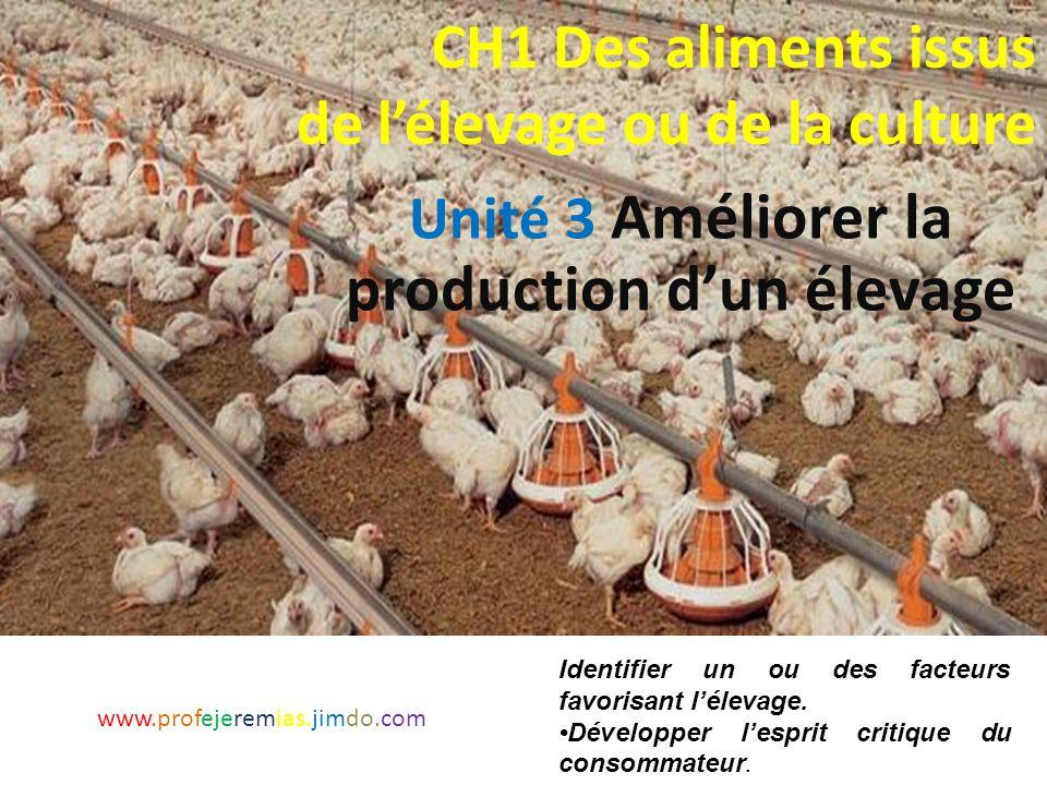 Comment l'homme améliore-t-il la production d'un élevage de poules? www.profejeremias.jimdo.com