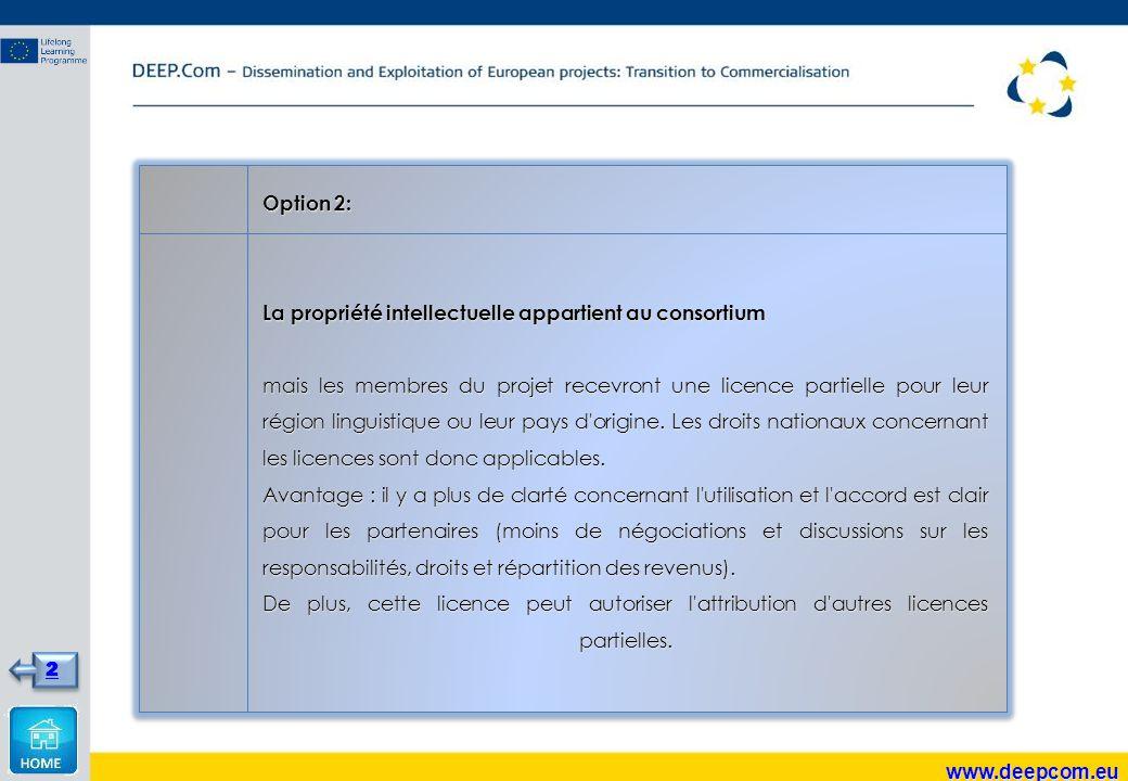 Option 2: La propriété intellectuelle appartient au consortium mais les membres du projet recevront une licence partielle pour leur région linguistique ou leur pays d origine.