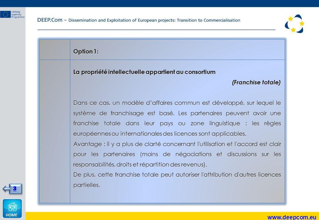 Option 1: La propriété intellectuelle appartient au consortium (Franchise totale) Dans ce cas, un modèle d'affaires commun est développé, sur lequel le système de franchisage est basé.