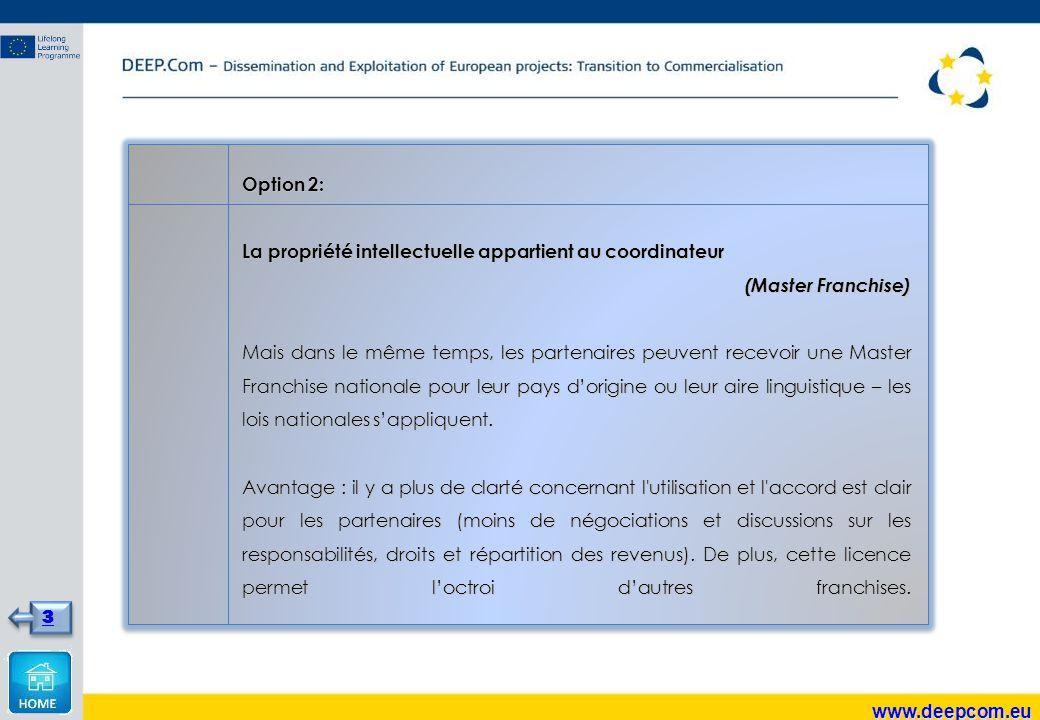 Option 2: La propriété intellectuelle appartient au coordinateur (Master Franchise) Mais dans le même temps, les partenaires peuvent recevoir une Master Franchise nationale pour leur pays d'origine ou leur aire linguistique – les lois nationales s'appliquent.
