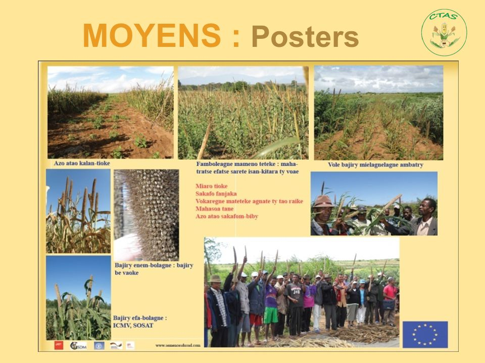 MOYENS : Posters