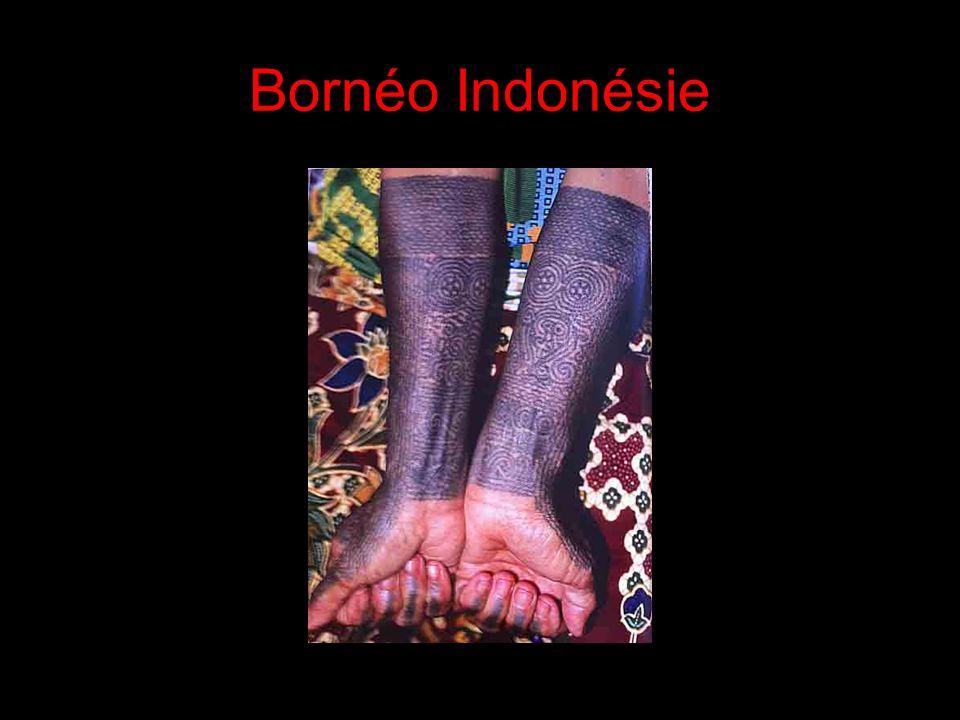 Bornéo Indonésie