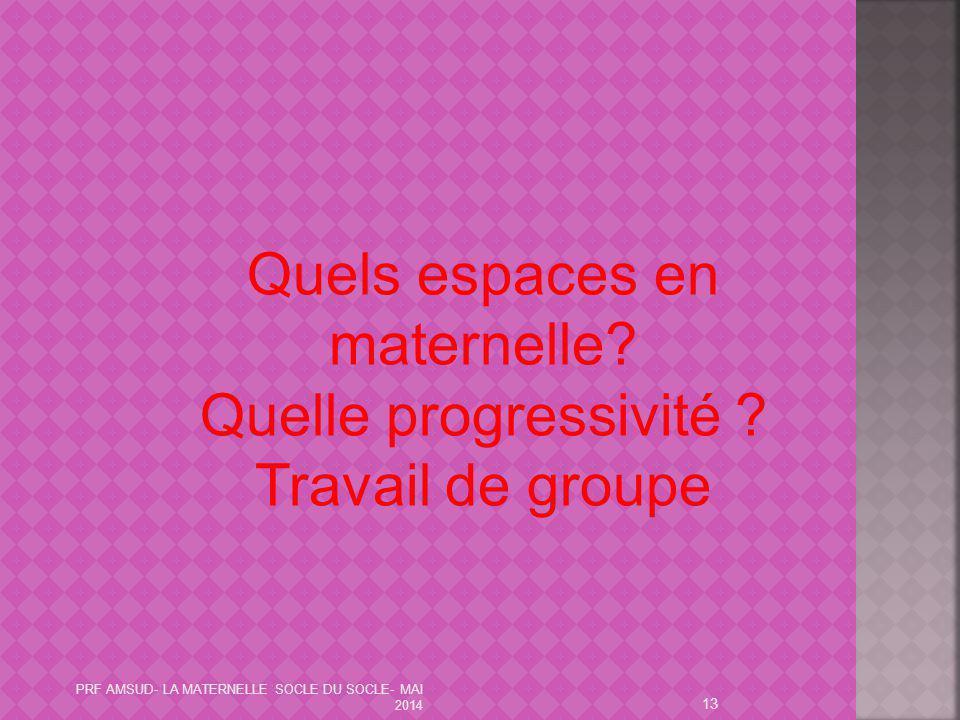 13 Quels espaces en maternelle? Quelle progressivité ? Travail de groupe PRF AMSUD- LA MATERNELLE SOCLE DU SOCLE- MAI 2014