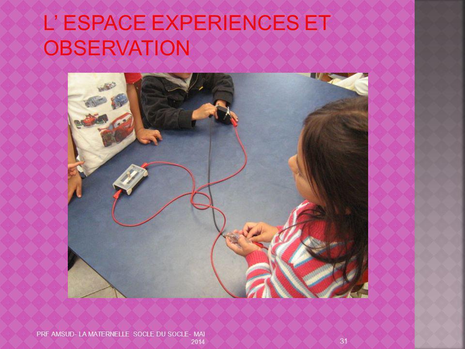 31 L' ESPACE EXPERIENCES ET OBSERVATION PRF AMSUD- LA MATERNELLE SOCLE DU SOCLE- MAI 2014