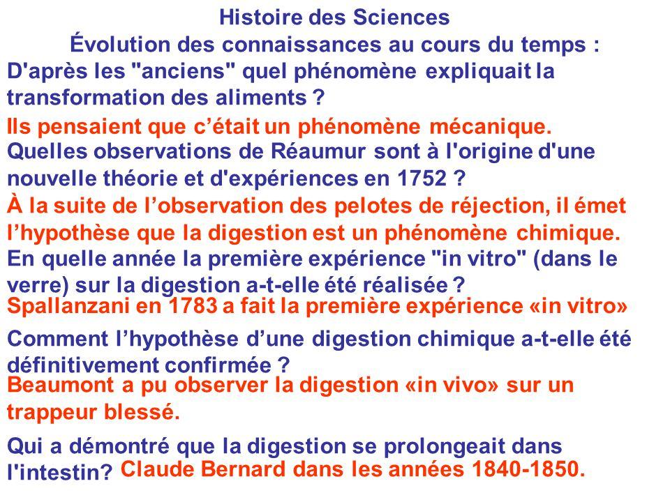 Histoire des Sciences Évolution des connaissances au cours du temps : D après les anciens quel phénomène expliquait la transformation des aliments .