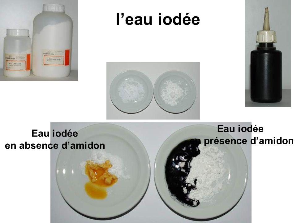 l'eau iodée Eau iodée en absence d'amidon Eau iodée en présence d'amidon