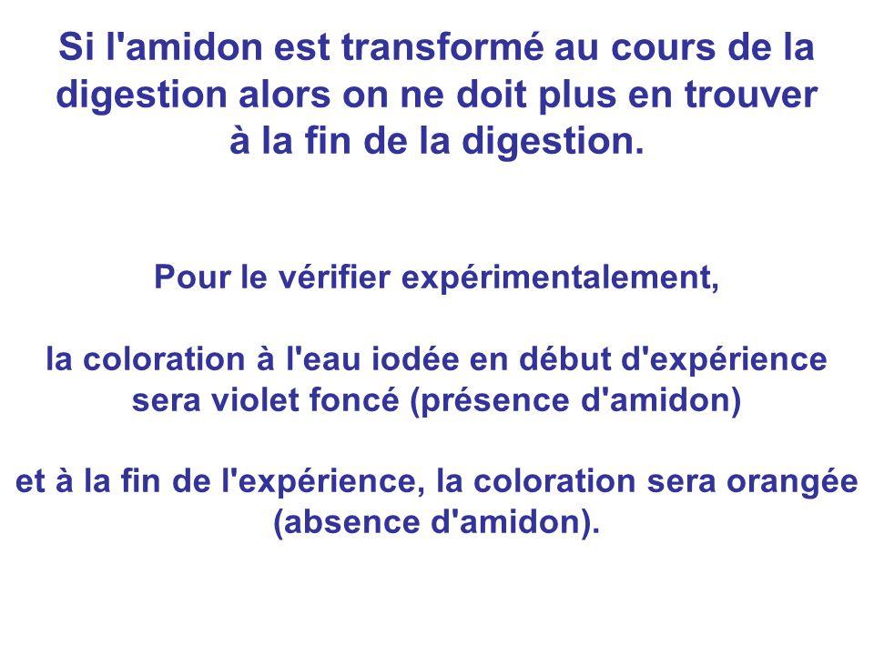 Si l amidon est transformé au cours de la digestion alors on ne doit plus en trouver à la fin de la digestion.