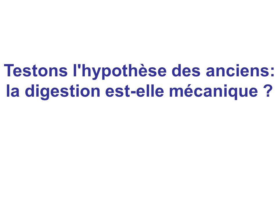 Testons l'hypothèse des anciens: la digestion est-elle mécanique ?