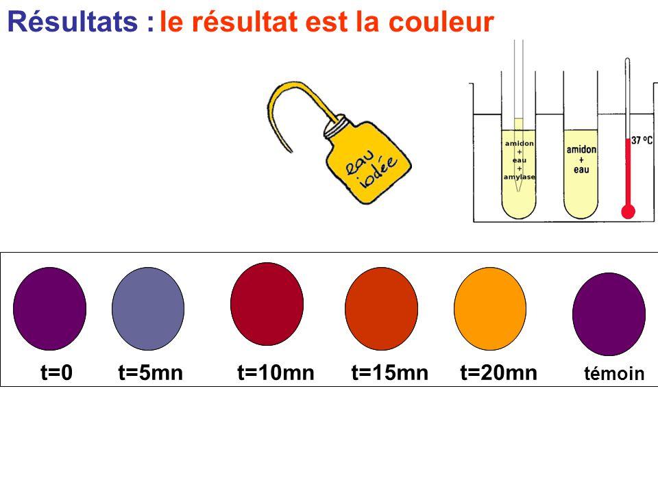 Résultats : témoin t=0t=5mnt=10mnt=15mnt=20mn le résultat est la couleur