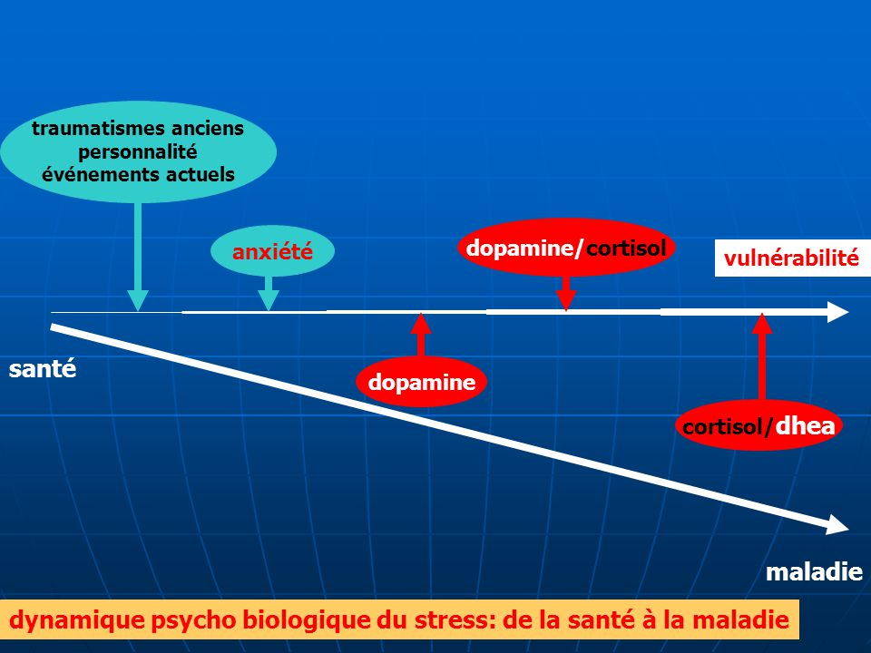 santé maladie vulnérabilité cortisol/ dhea dopamine/cortisol dopamine anxiété traumatismes anciens personnalité événements actuels dynamique psycho bi