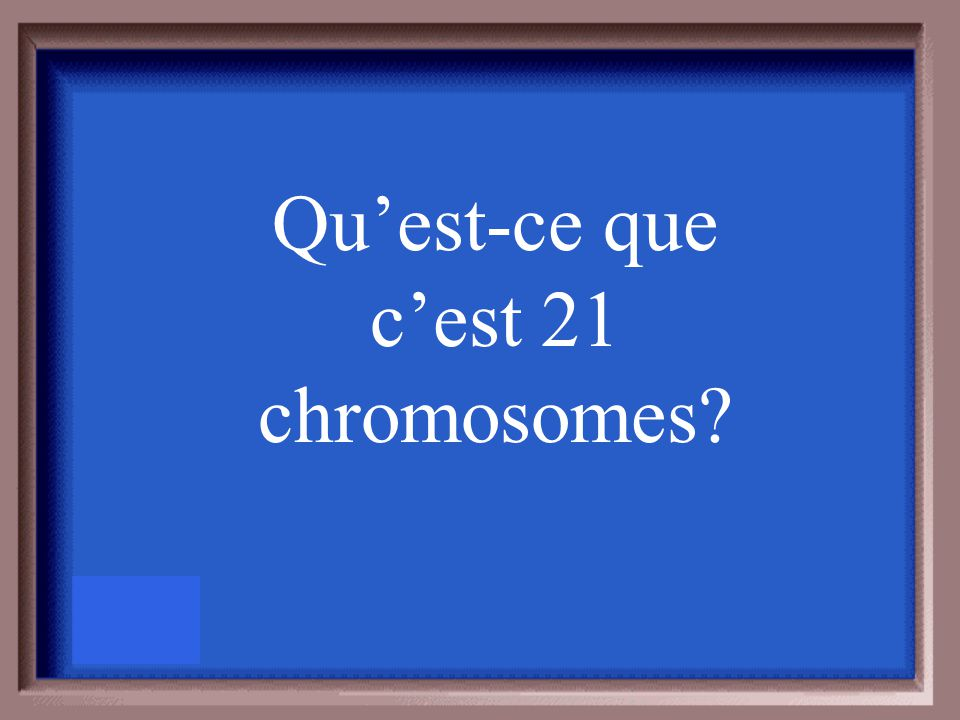 Si un rat a 42 chromosomes, combien en-a-t-il dans les spermatazoïdes?