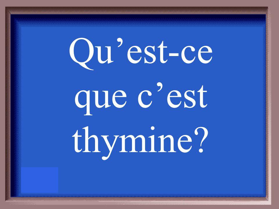 La base azotée qui se lie avec adénine est ___________.