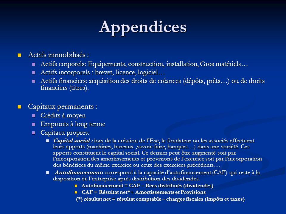 Appendices Actifs immobilisés : Actifs immobilisés : Actifs corporels: Equipements, construction, installation, Gros matériels… Actifs corporels: Equi