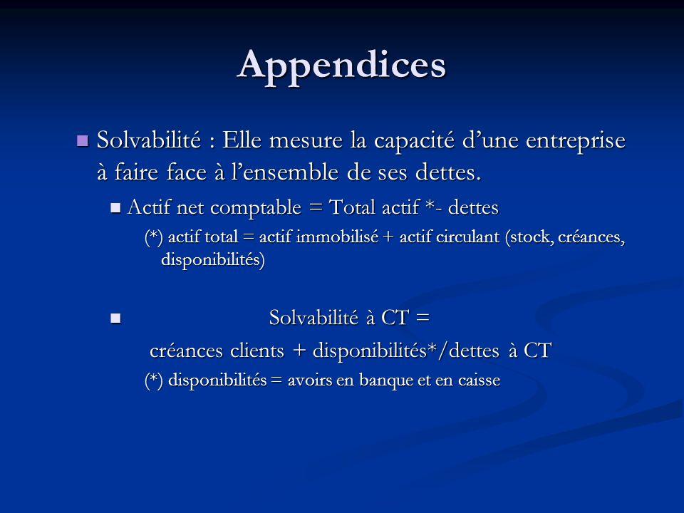Appendices Solvabilité : Elle mesure la capacité d'une entreprise à faire face à l'ensemble de ses dettes. Solvabilité : Elle mesure la capacité d'une