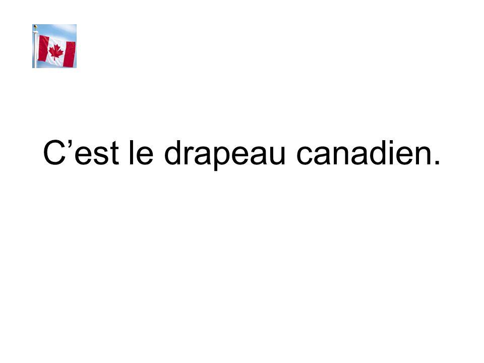 C'est le drapeau canadien.