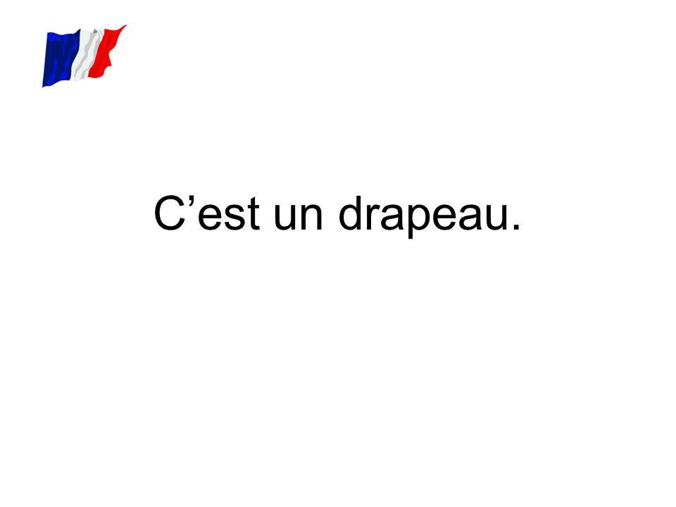 C'est le drapeau français.