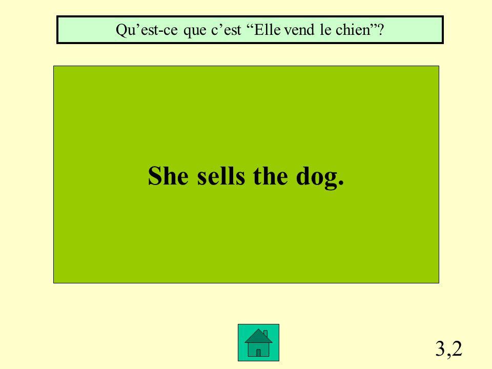 """3,1 They study French. Qu'est-ce que c'est """"Ils étudient le français""""?"""