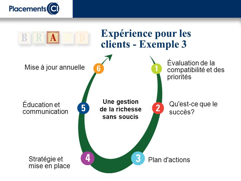 Expérience pour les clients - Exemple 3 Mise à jour annuelle Éducation et communication Plan d'actions Stratégie et mise en place Qu'est-ce que le suc