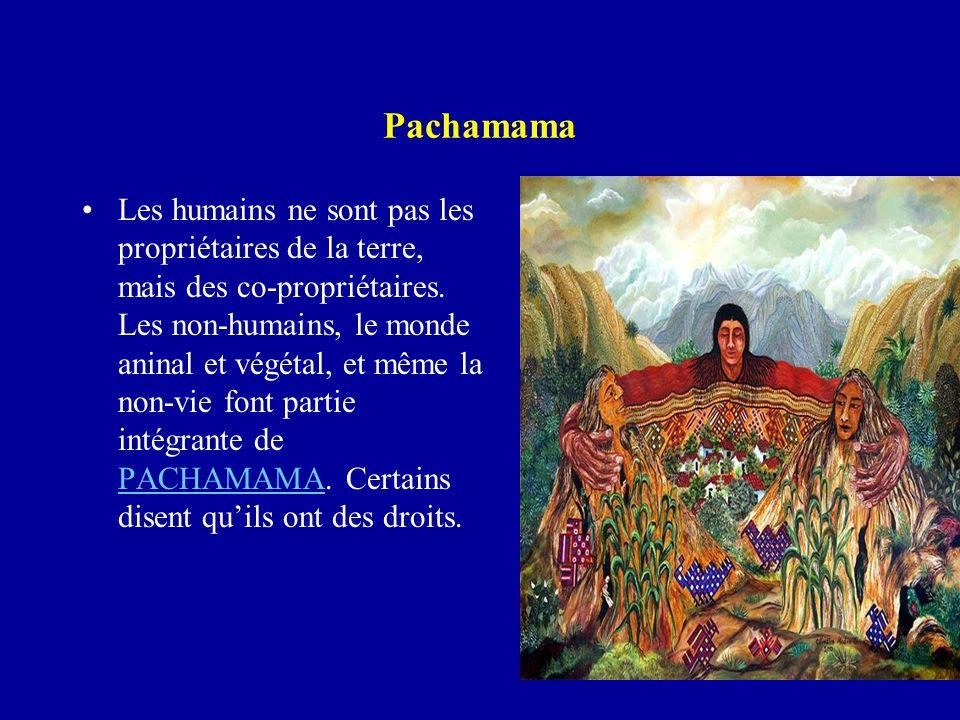 Pachamama Les humains ne sont pas les propriétaires de la terre, mais des co-propriétaires. Les non-humains, le monde aninal et végétal, et même la no