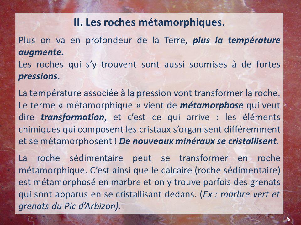 Dépôts actuels de coquilles en bordure de l étang de Campignol (Gruissan )* LES ROCHES Les roches sont si nombreuses qu'on les a regroupées en trois grandes catégories : I.