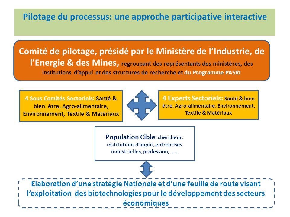 + Pilotage du processus: une approche participative interactive Comité de pilotage, présidé par le Ministère de l'Industrie, de l'Energie & des Mines,